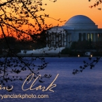 Jefferson Monument At Sunrise
