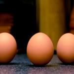Standing Eggs