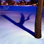 Frozen Fox River @ Waukesha, WI