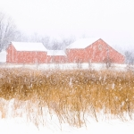 Barn in Snow Storm @ Waukesha, WI